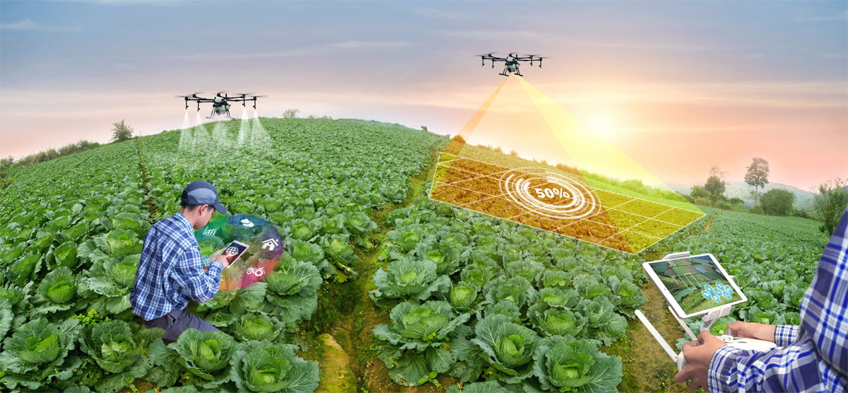 Smart Agricolture with AI Drones